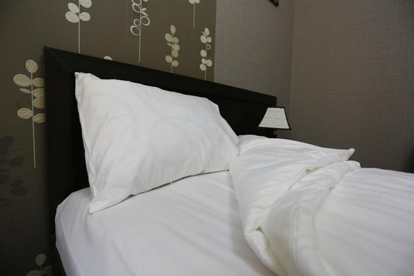 Aksai Hotel - фото 10