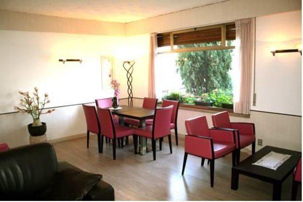 Hotel Villa Carmen - фото 6