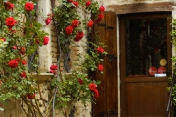 Agriturismo Villa Cicchi - фото 20