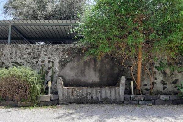 La Palma - фото 17