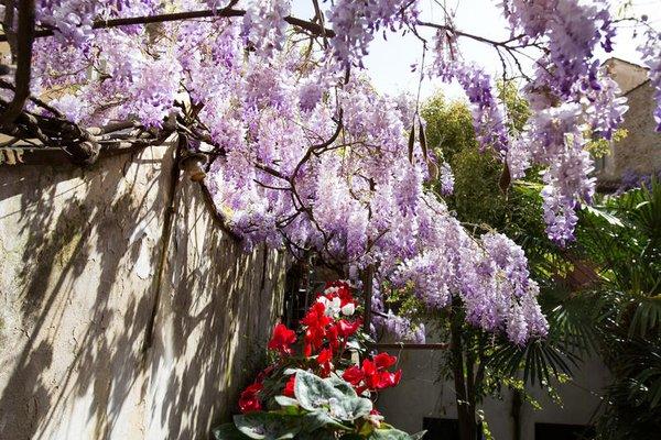 Locanda Orchidea - фото 21