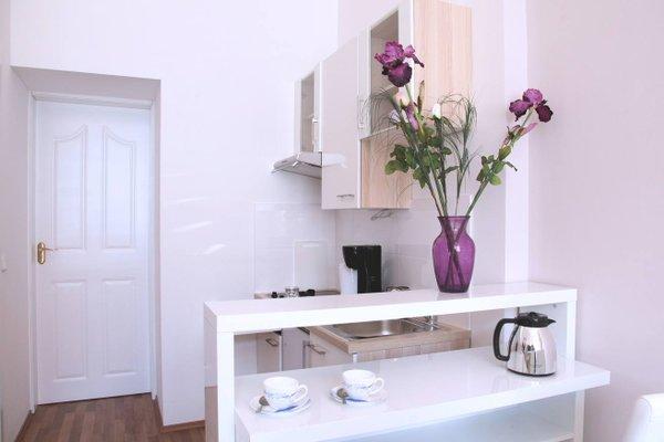 Graf Sobieski Apartments - фото 11