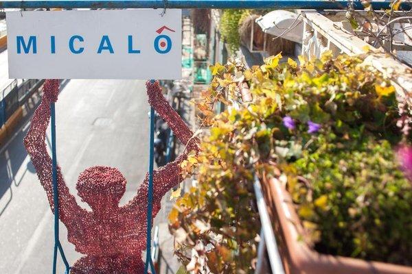 Micalo - фото 19