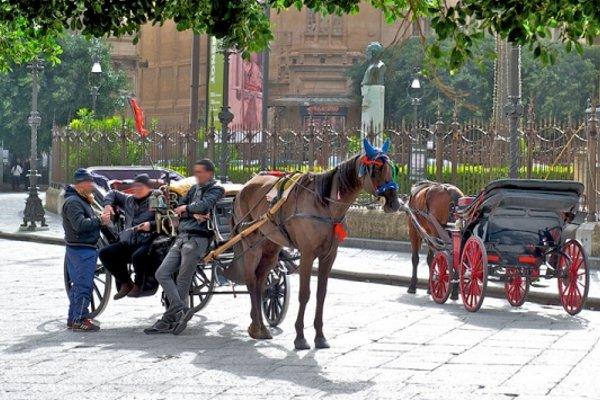 Mercure Palermo Centro - 22
