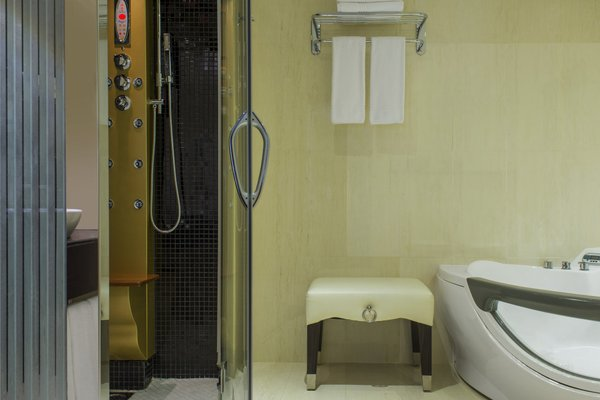 Le Meridien Dubai Hotel & Conference Centre - фото 21
