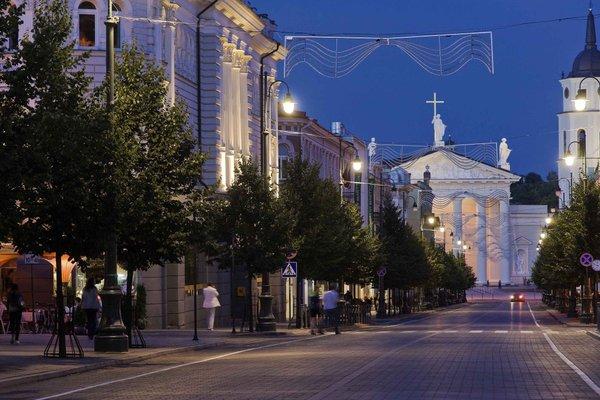Novotel Vilnius Centre - фото 22