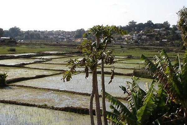La Residence d'Ankerana - 16