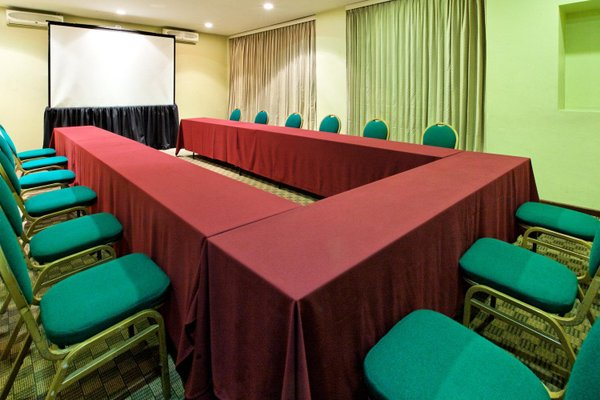 Holiday Inn Hotel & Suites Mexico Zona Rosa - фото 19