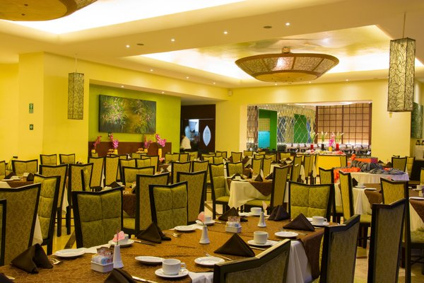 Crowne Plaza Hotel De Mexico - фото 13