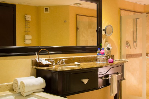 Crowne Plaza Hotel De Mexico - фото 15