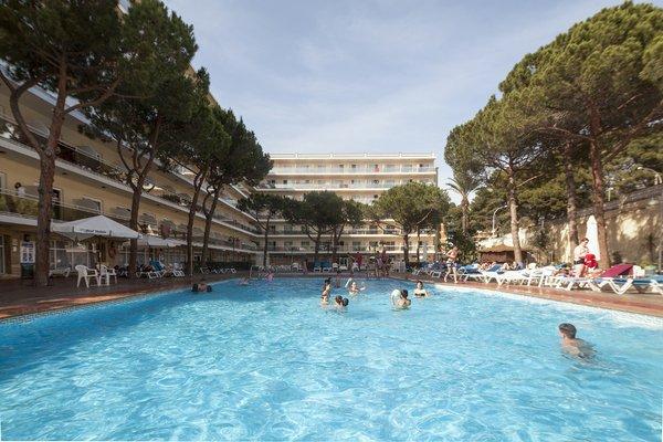 Hotel Oasis Park - фото 19