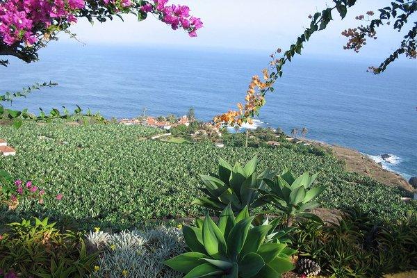 Residencia San Pedro - фото 3
