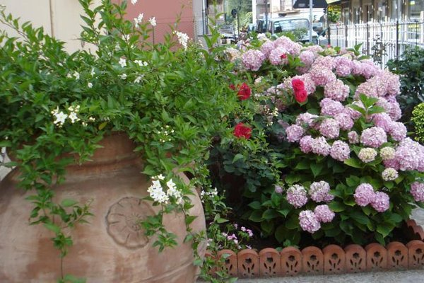 Il Giardino di Mary - фото 15