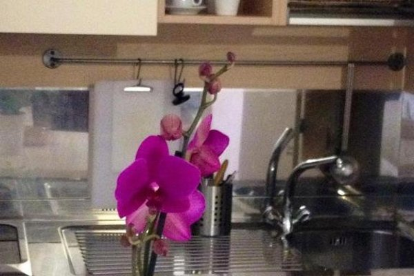Olly Apartments - фото 4