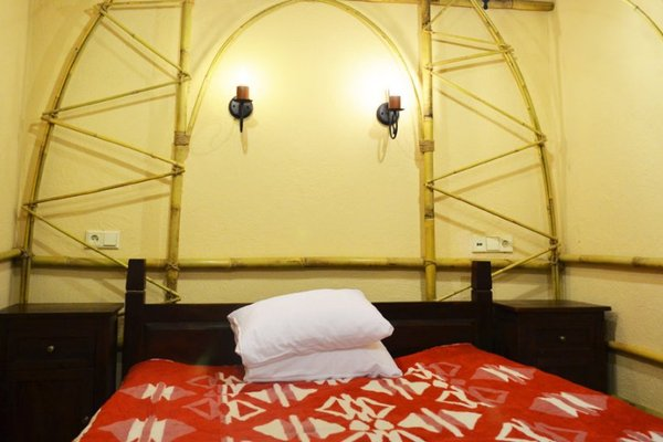 Отель Индия ЭТНОМИР - фото 9