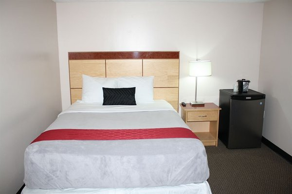 Bexon Rooms - Hotel Downtown Windsor - фото 14