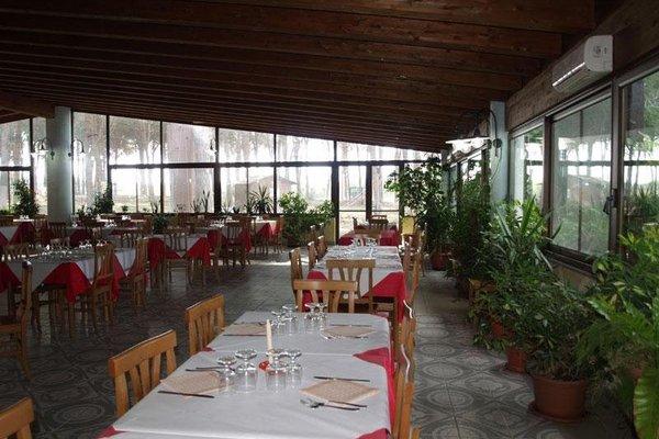 Hotel La Pineta - фото 12