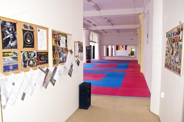 Martial Arts Sleepover Gym - 3