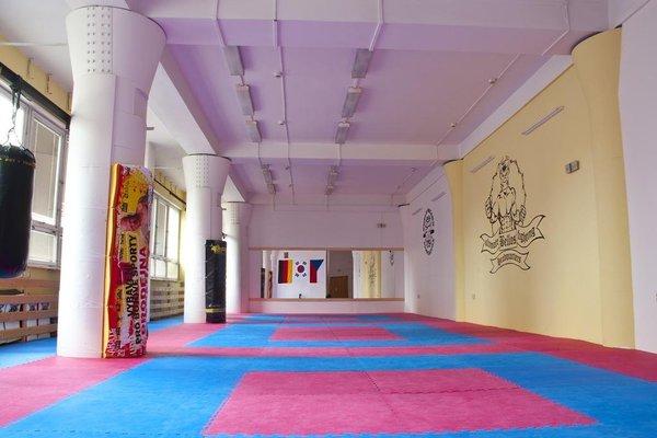 Martial Arts Sleepover Gym - 4