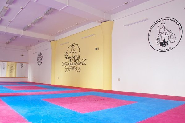 Martial Arts Sleepover Gym - 6