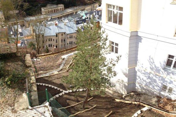 Apartments Vera - фото 4