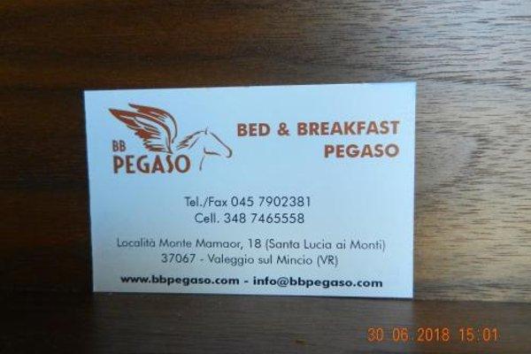Отель Pegaso - фото 14