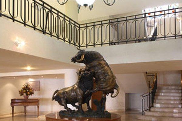 Hotel Francia Aguascalientes - фото 14