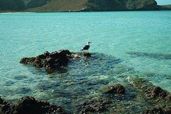 Las Gaviotas Resort - фото 20