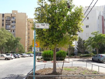 Апартаменты Sunlight Holiday Apartment