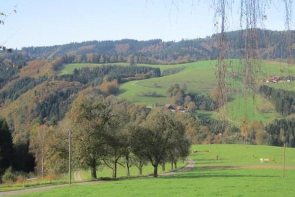 Ferienhaus Hubhof - фото 12