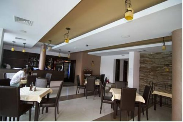 Salena Plaza Hotel - фото 9