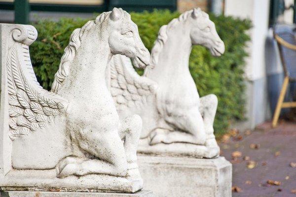 Hotel Het Witte Paard - фото 21