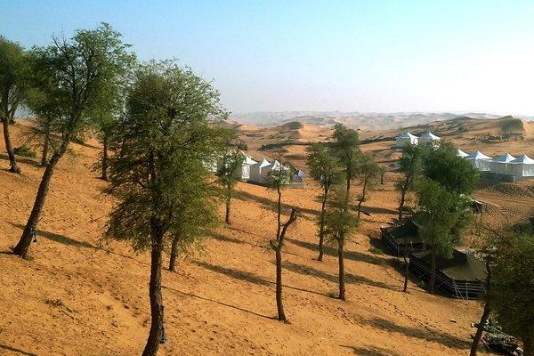 Bedouin Oasis Camp - фото 17