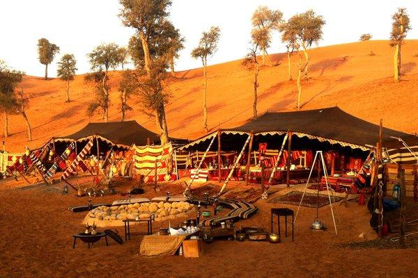 Bedouin Oasis Camp - фото 23