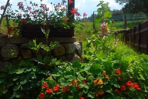 Agroturystyka Nostalgia - фото 20