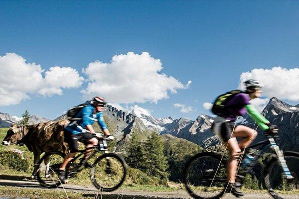 Alpenschloessl Wellnessresort - 21