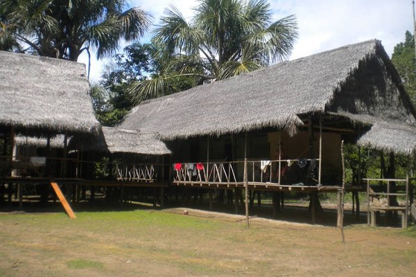 Ecological Jungle Trips & Amazon Lodge - 10