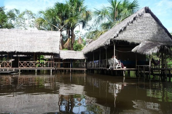Ecological Jungle Trips & Amazon Lodge - 11