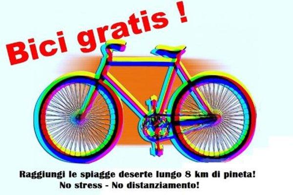 Apartment Cecina - 10
