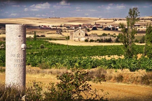 Posada Real del Buen Camino - фото 20