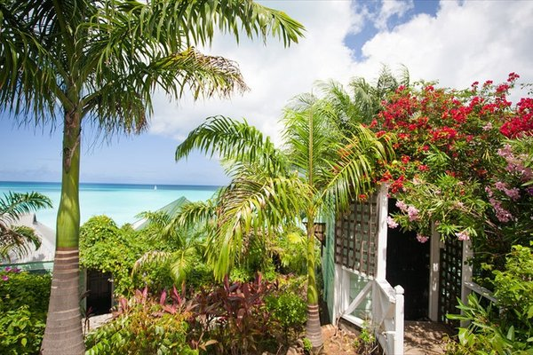 Cocos Hotel Antigua - All Inclusive - Adults Only - 22