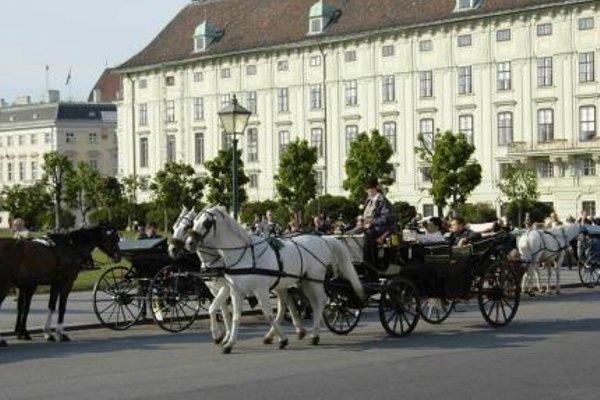 de France Wien - фото 21