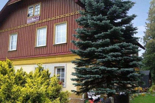 Apartment Harrachov 1 - фото 13