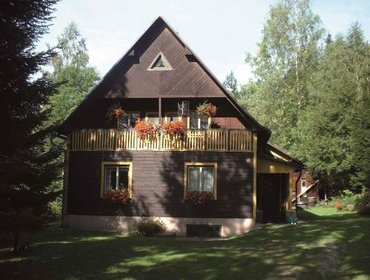 Апартаменты Holiday Home Dolni Dvur 1