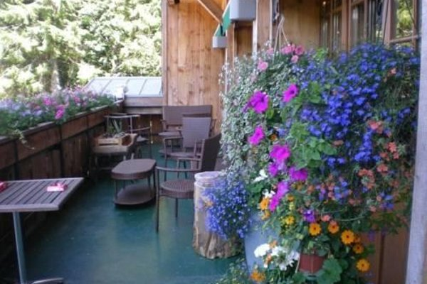 Chalet Hotel Le Collet - фото 10
