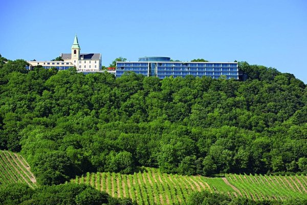Suitehotel Kahlenberg - фото 18