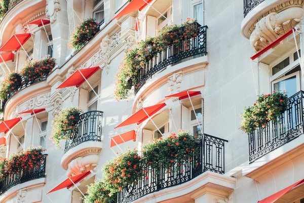 Hotel Plaza Athenee Paris - фото 29