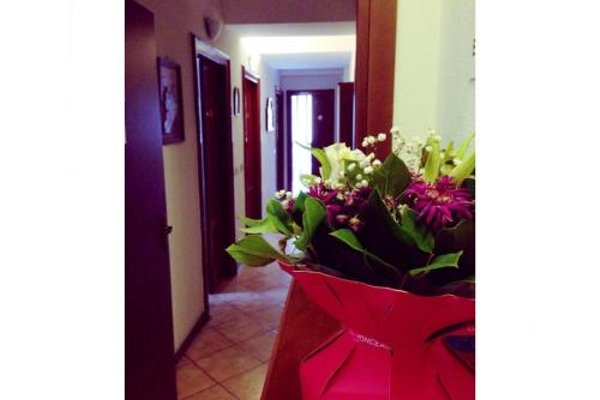 Hotel Alba - фото 17