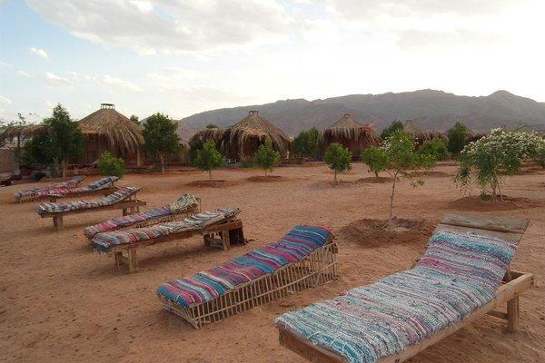 Bedouin Star (Ras Shetan area) - 11