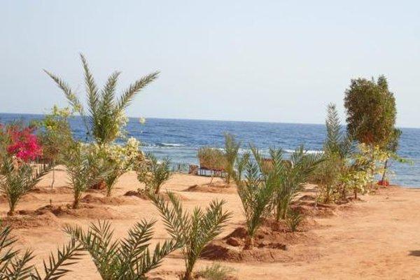Bedouin Star (Ras Shetan area) - 21